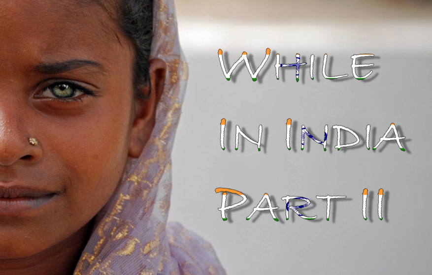 While In India Graphic 2